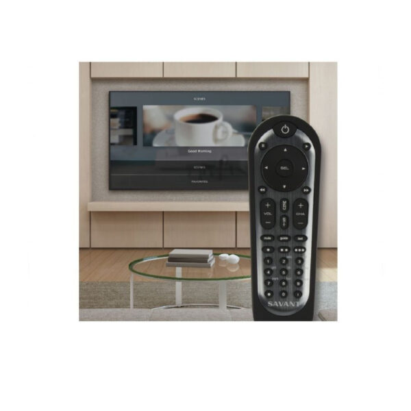 Savant PKG-HOMEREM300-00 Home App