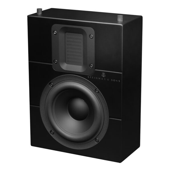 Steinway Lyngdorf IW-15 In-Wall Speaker